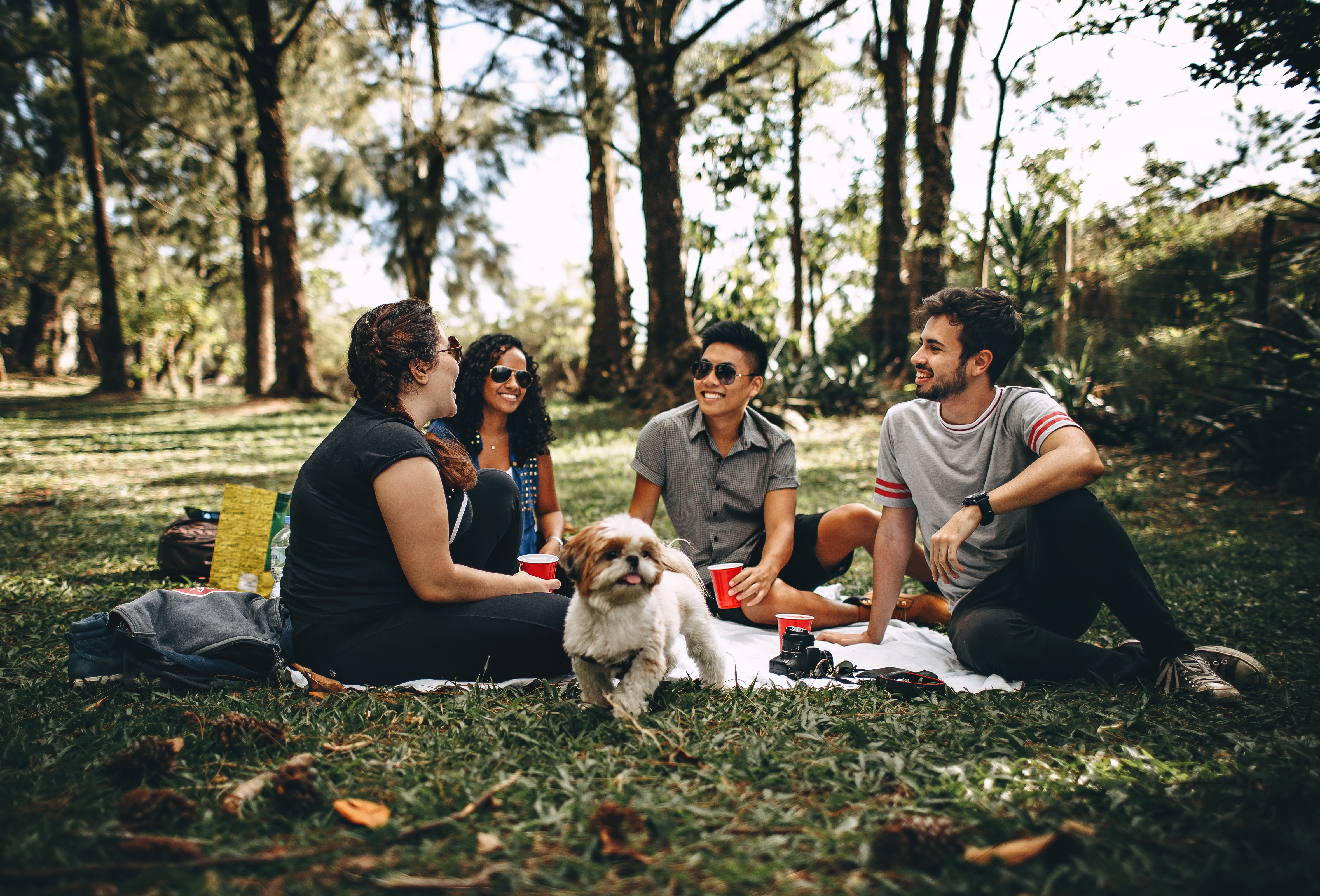 group of friends talking in the park with a talk