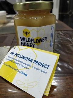 Ontario Tech's wildflower honey